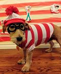 Where's Waldo Costume