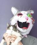 Zombie Cat Costume