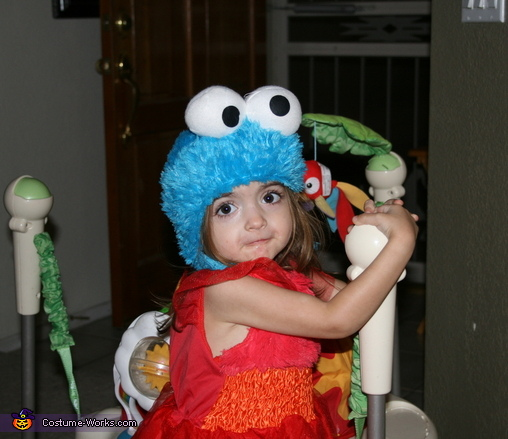 If Elmo & Cookie had a child..., Sesame Street Family Costume