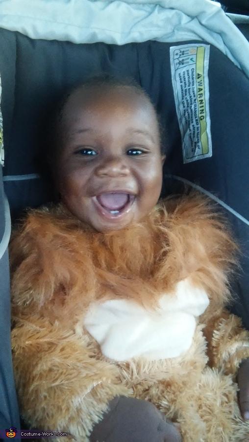 Lion Baby Costume
