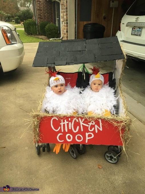 2 Chicks in a Coop Homemade Costume