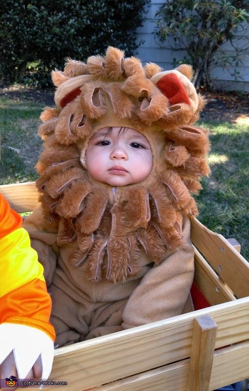 A-roarable Costume