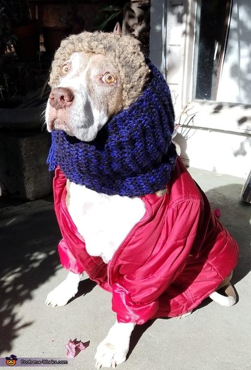 Randy, A Christmas Story Costume