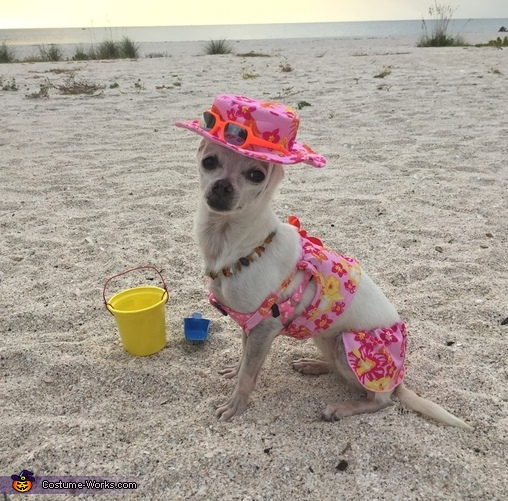 A day at the beach, A day at the Beach Costume