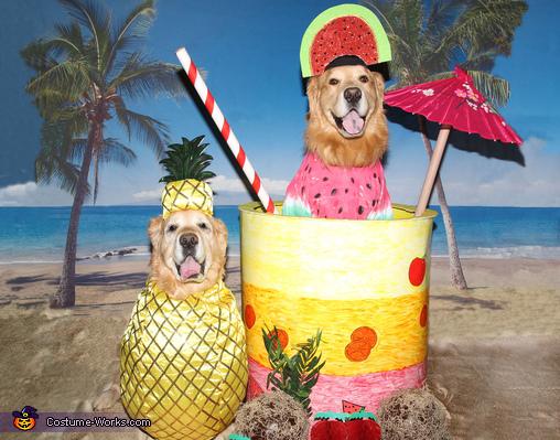 A Fruity Pina Colada at the Beach Costume