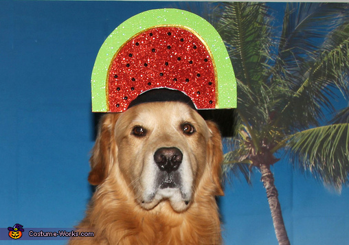The Watermelon Slice Hat, A Fruity Pina Colada at the Beach Costume