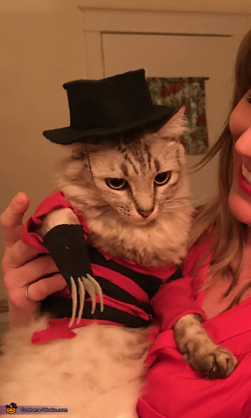 A Nightmeow on Elm Street Costume