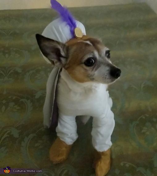 A Peanut Sized Aladdin Costume