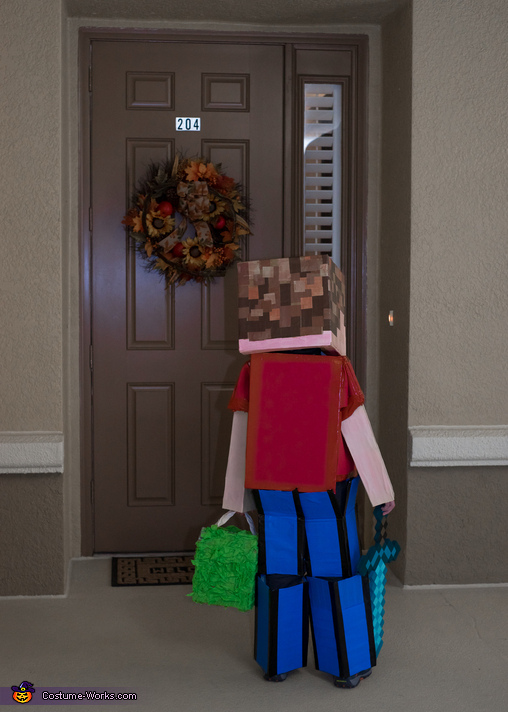 Trick or Treating (back of costume), Alex in Minecraft Costume