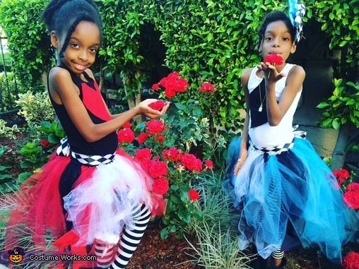 Alice and Queen of Hearts Costumes