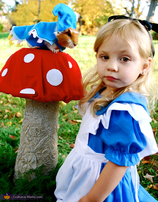 Alice and the Caterpillar from Alice in Wonderland Costume