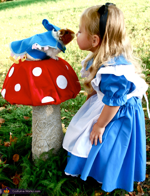 Best Buddies, Alice and the Caterpillar from Alice in Wonderland Costume