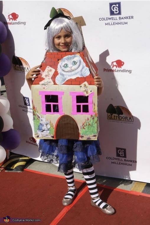 Alice in Wonderland Costume