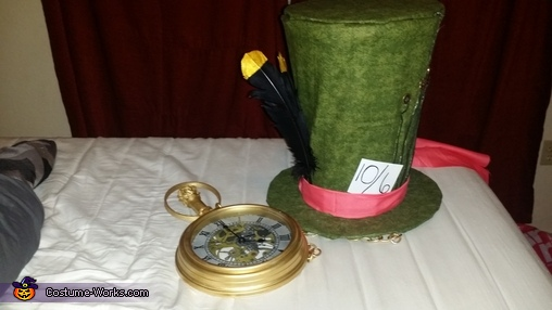 DIY Alice in Wonderland Family Costume
