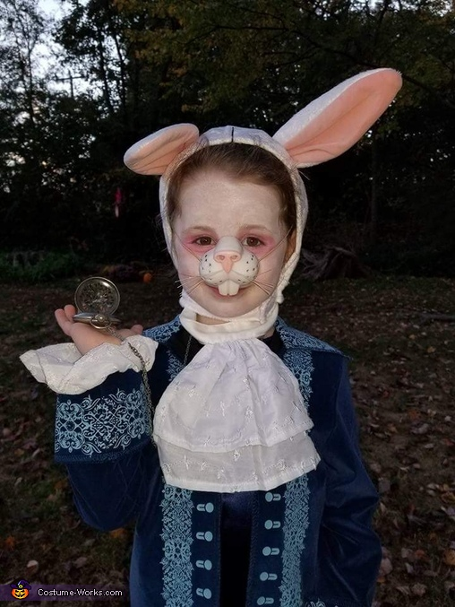 I'm late, I'm late! For a very important date., Alice in Wonderland Family Costume