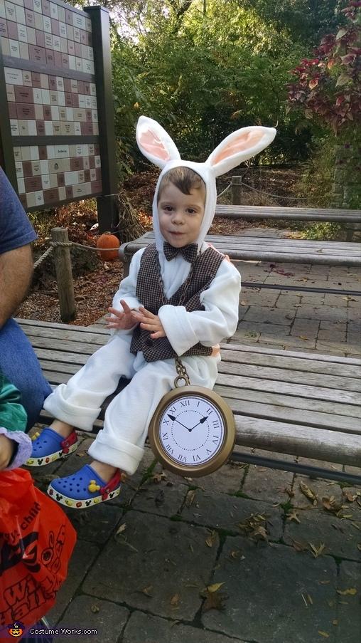 Hudson as the White Rabbit, Alice in Wonderland Costume
