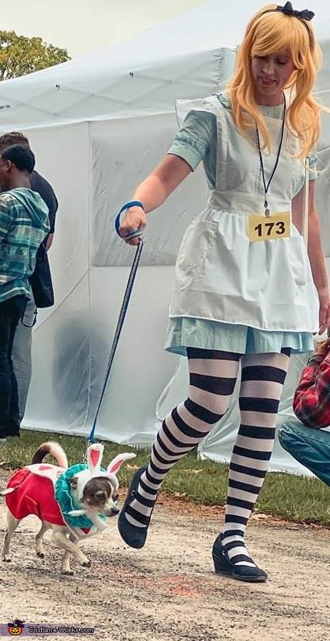 Alice in Wonderland & The White Rabbit Costume