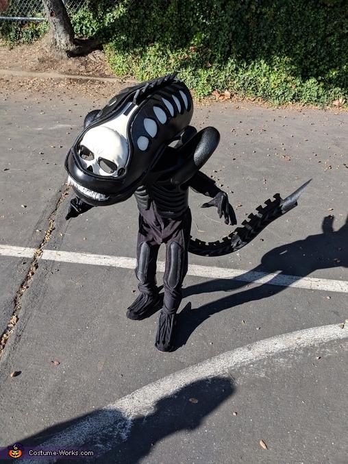 Xenomorph side angle in daylight, Alien Xenomorph Costume