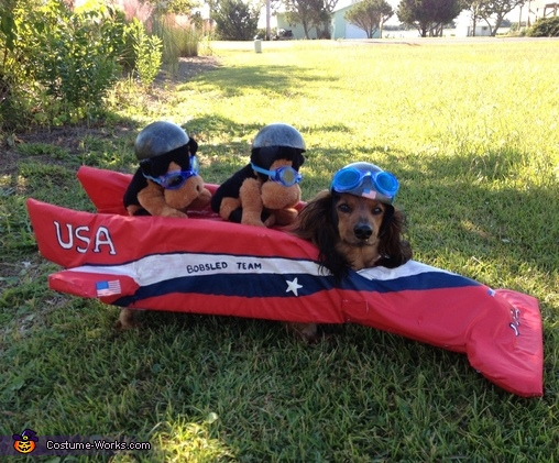 Larry and the bobsled, American Bobsled Team Costume