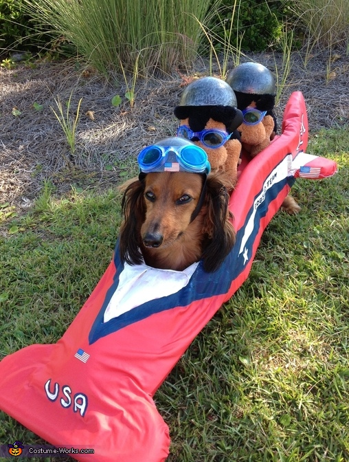 American Bobsled Team Costume