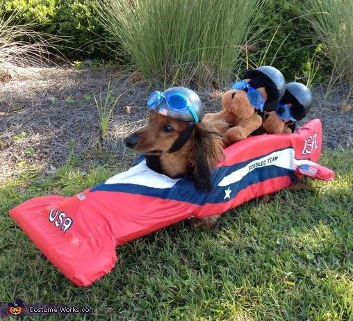 The other side, American Bobsled Team Costume
