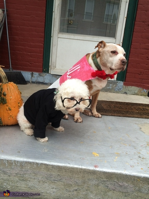 Pop art, Andy Warhol and Tomato Soup Dogs Costume