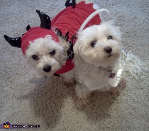 Angel & Devil Costume