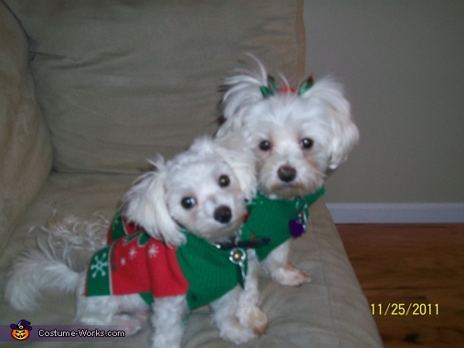 Christmas Elves, Angel & Devil Costume
