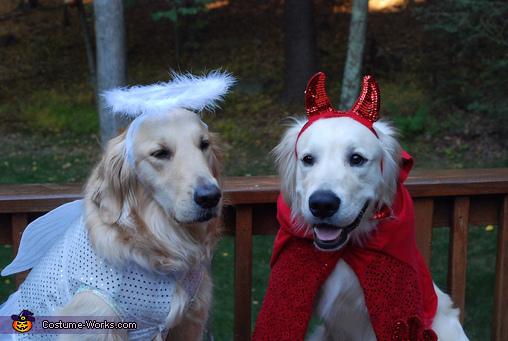 Angel & Devil, Angel & Devil Costume