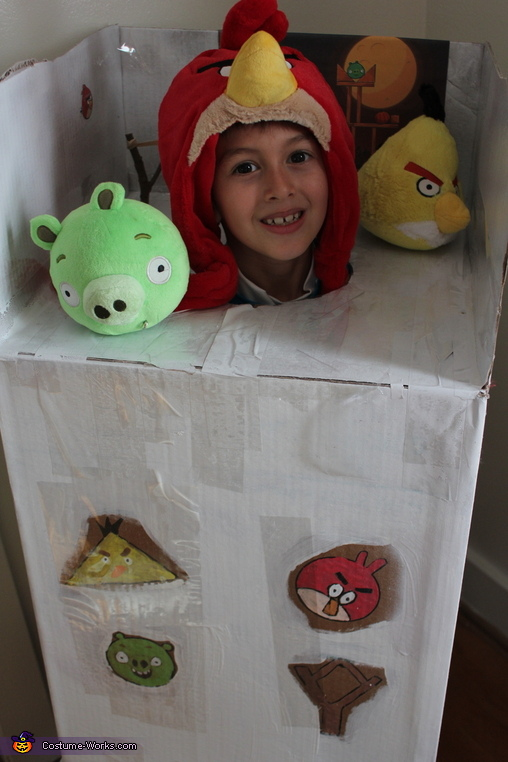 Angry Birds Costume