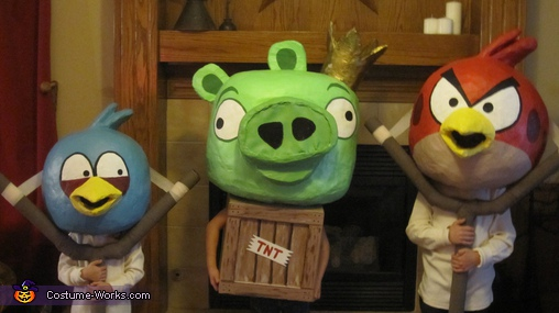 Angry Birds Iowa Style - Homemade costumes for kids