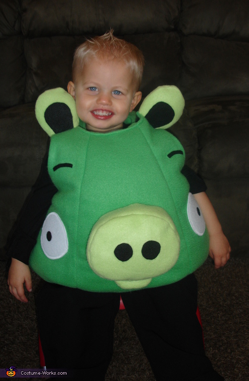 Angry Birds Pig Costume, Angry Birds Costumes
