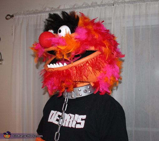 Animal from Muppets Homemade Costume