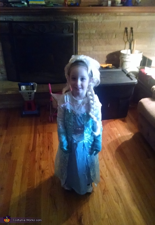Anna and Elsa Costume