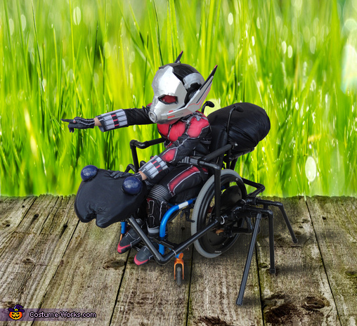 Ant-Man and Antony in the grass., Ant-Man and Antony Costume