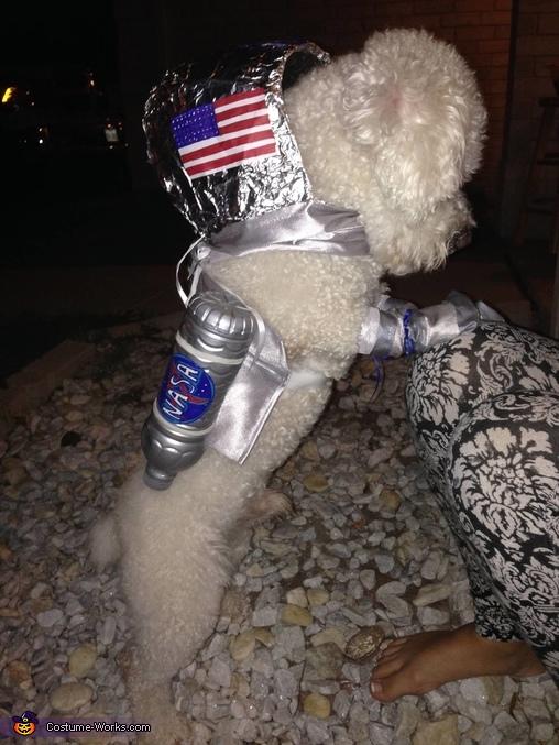 AstroPup, Apollo 11 Team Costume
