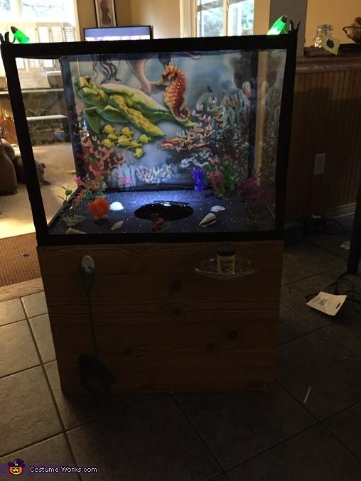 After adding the lights, Aquarium Costume