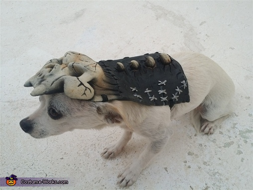 Army of Darkness Dog Costume