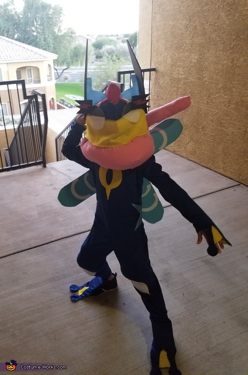 Ash Greninja Pokemon Costume