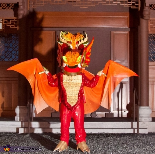 Asian Dragon Costume