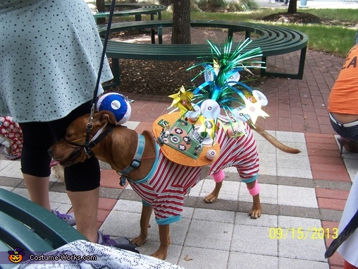 Astro Doggie Dog Costume