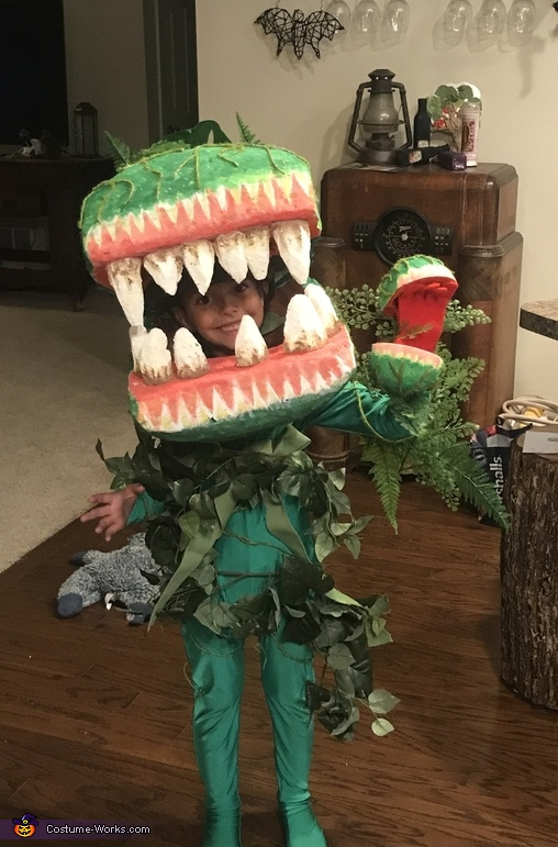 Audrey 2 Costume