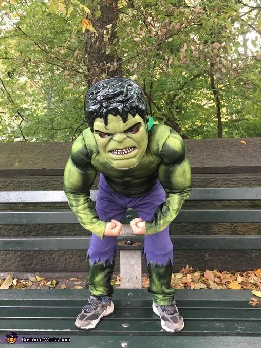 Strong hulk, Avengers Costume