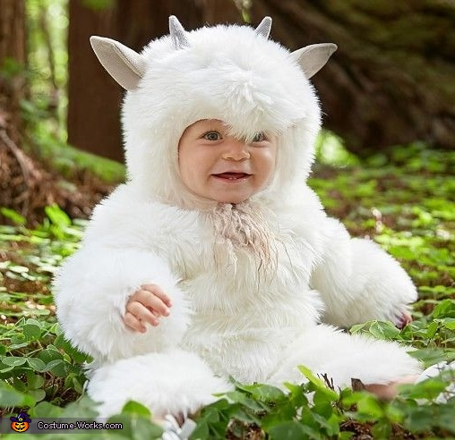 Baby Animals Costume
