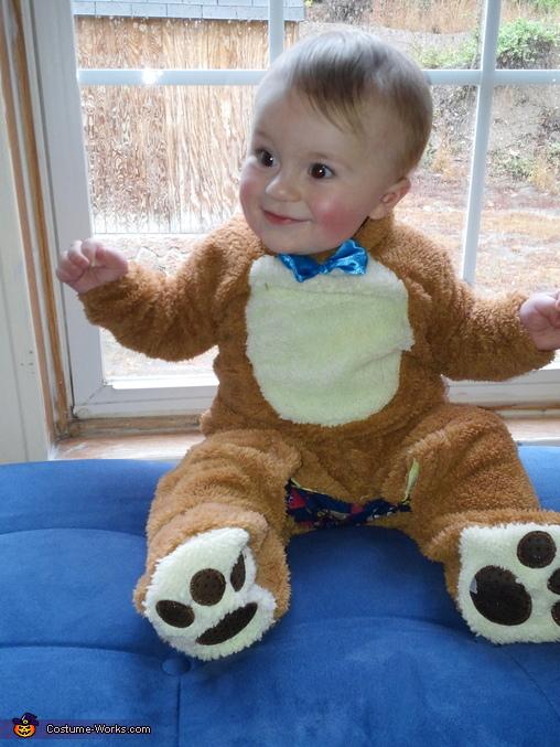Baby Bear Costume