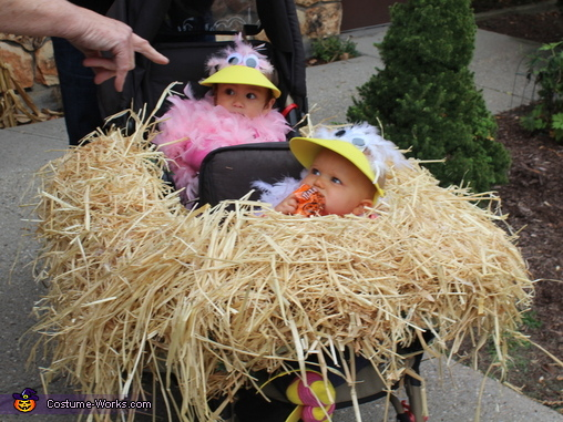 Baby Birds in their Nest Costume