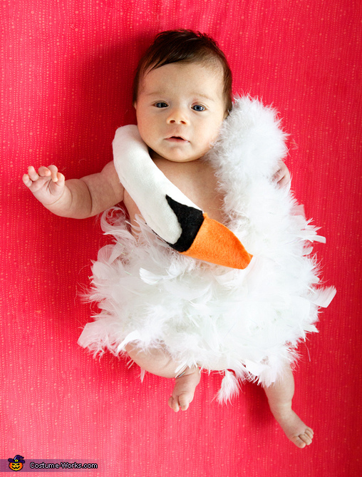 costume ideas for babys first halloween baby bjork swan dress halloween costume - Baby First Halloween