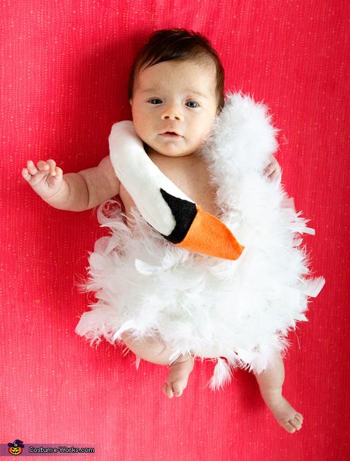Baby Bjork Swan Dress Costume