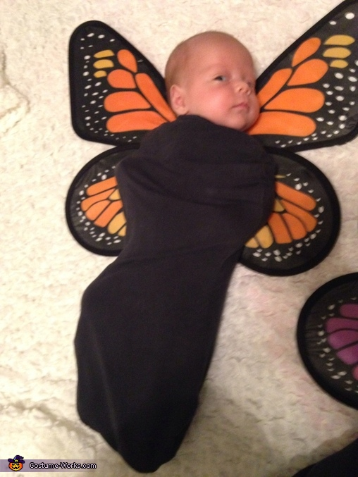 Baby Butterflies Homemade Costumes