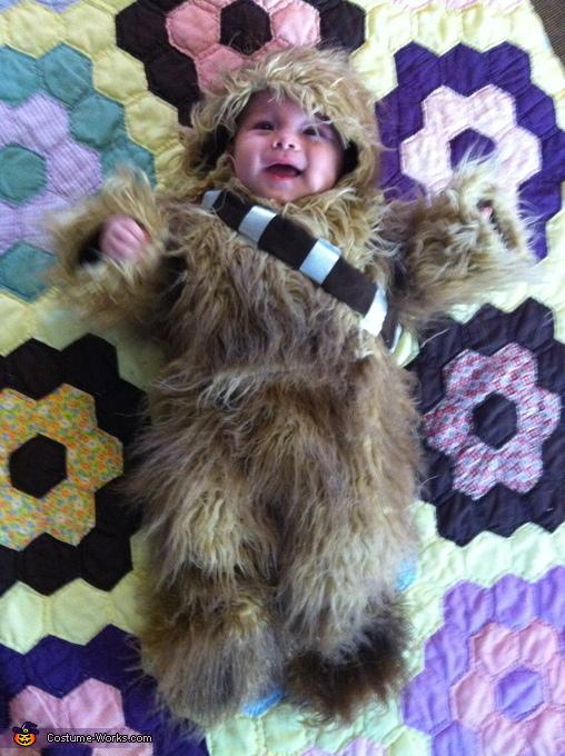 Diy Baby Chewbacca Costume